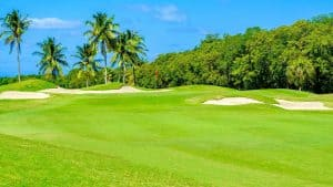 Southwest Florida Images - Golf