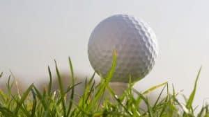 Southwest Florida Images - Golf