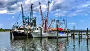 Southwest Florida Fish - Shrimp Boats